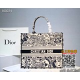 dior 2019手提包,dior 名牌包包,dior 斜背包! (女款)